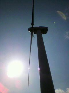 東伊豆町の風車